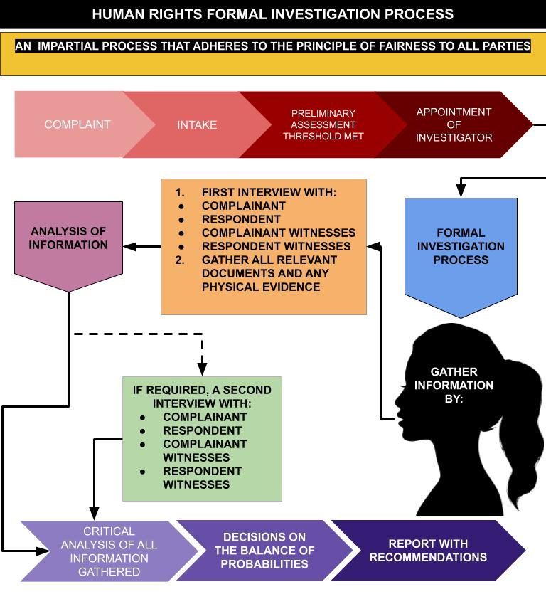 graphic representation of the formal Human Rights investigation process