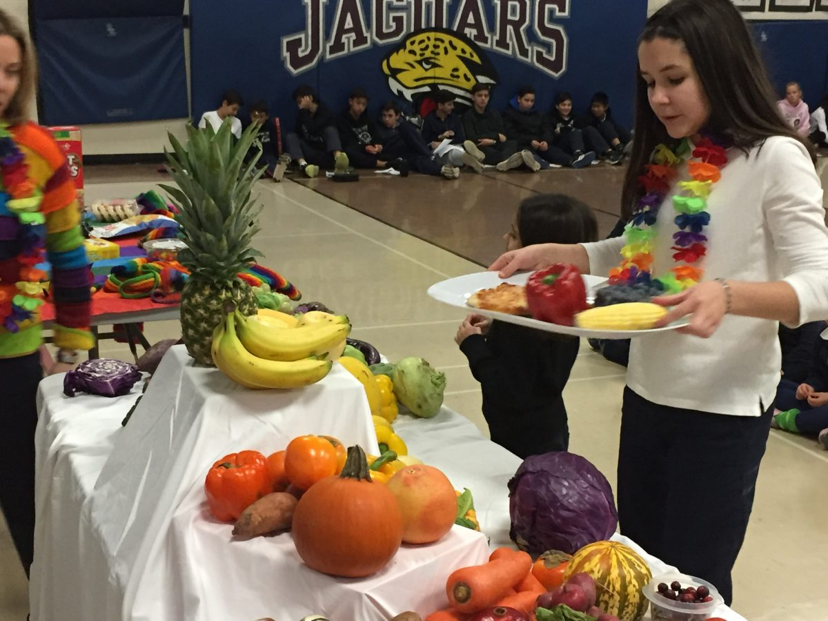 YCDSB schools aim for Ophea's Healthy Schools Certification